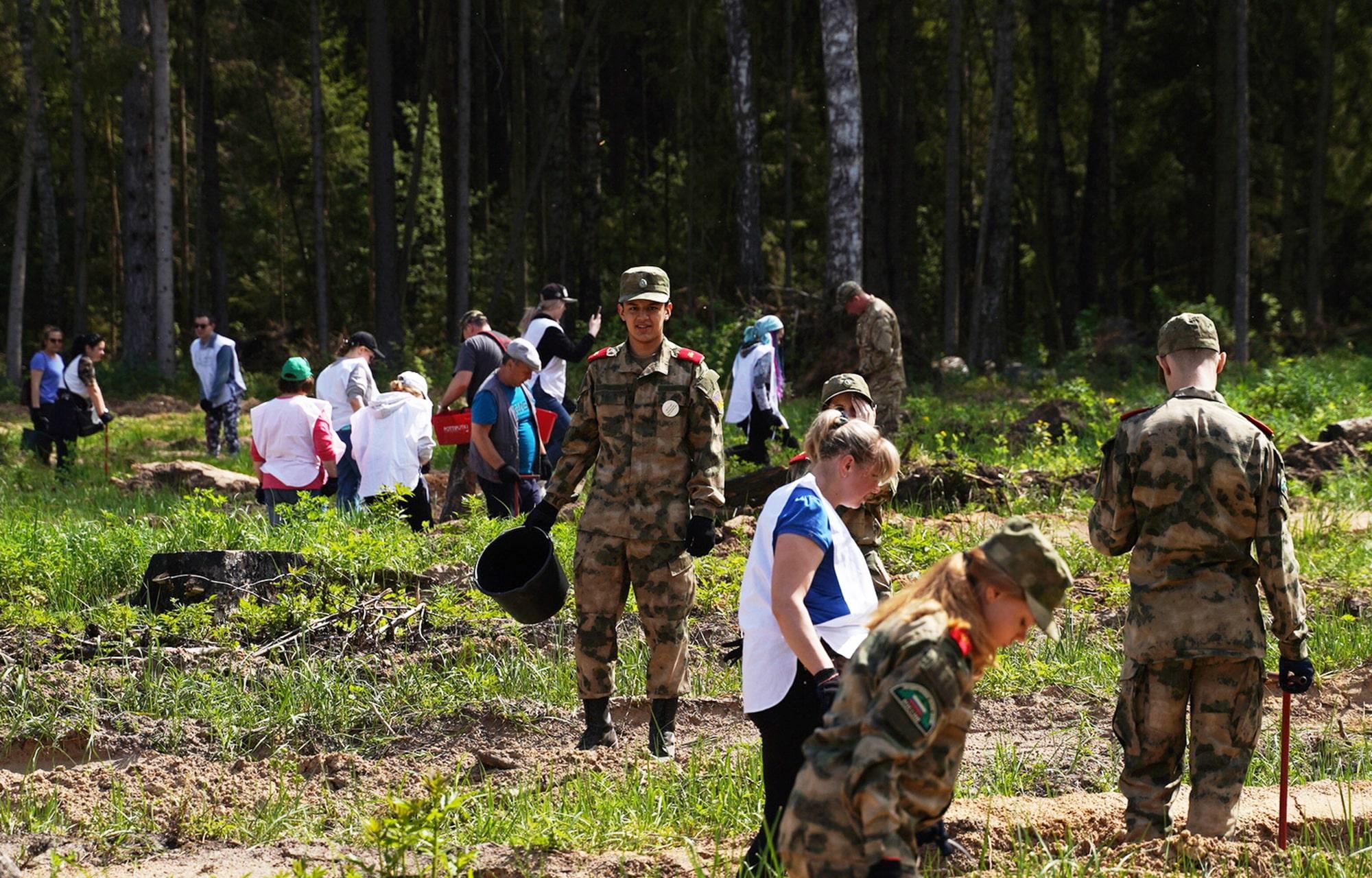 Губернатор со школьниками и студентами высадил 3 тысячи сеянцев ели