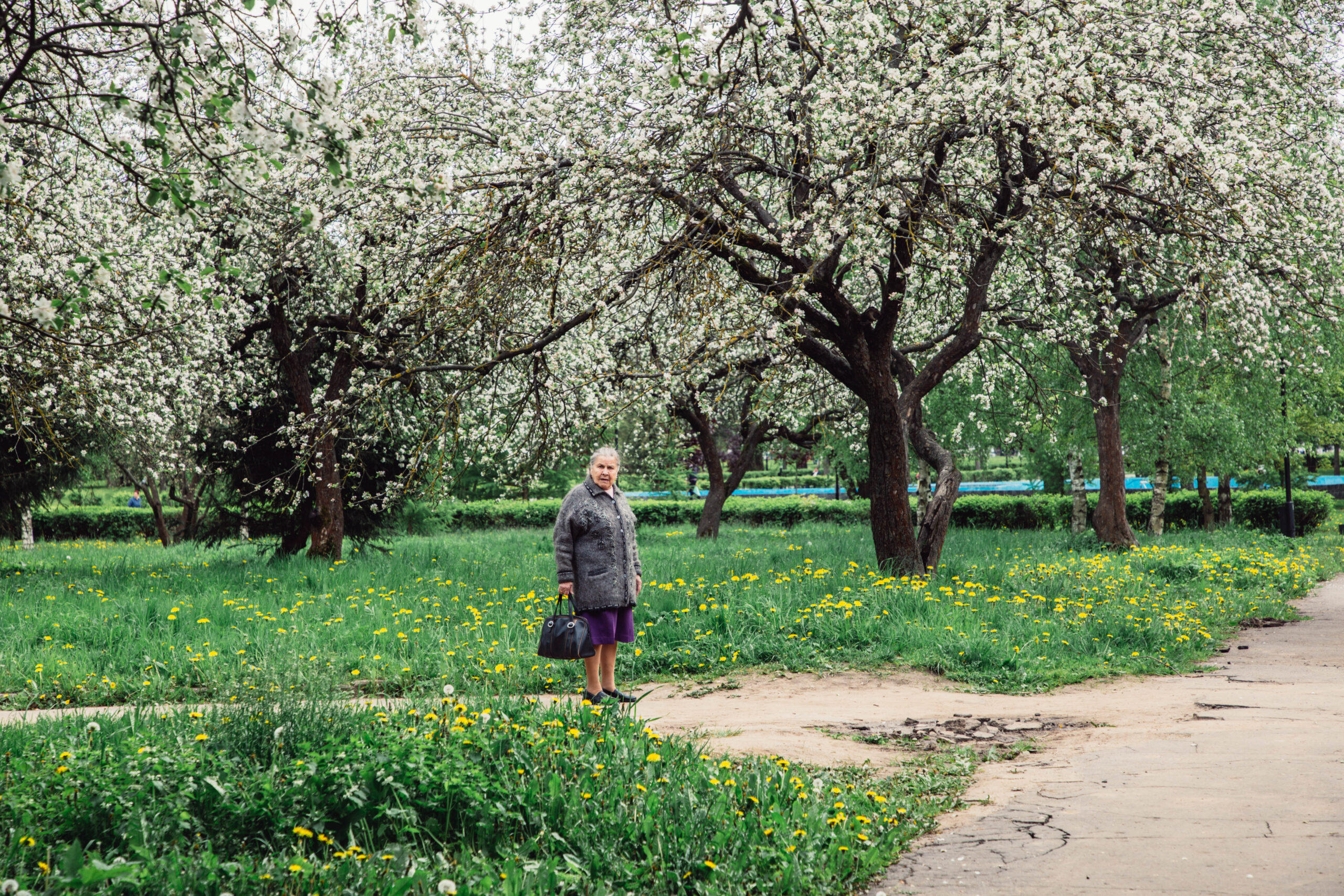 Стало известно, насколько больше женщин среди долгожителей в Тверской области
