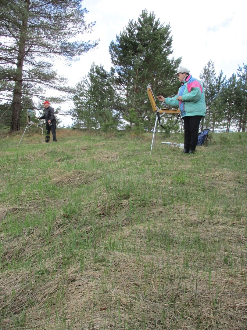 В Тверской области на месте проведения пленэра художников обнаружены останки солдата
