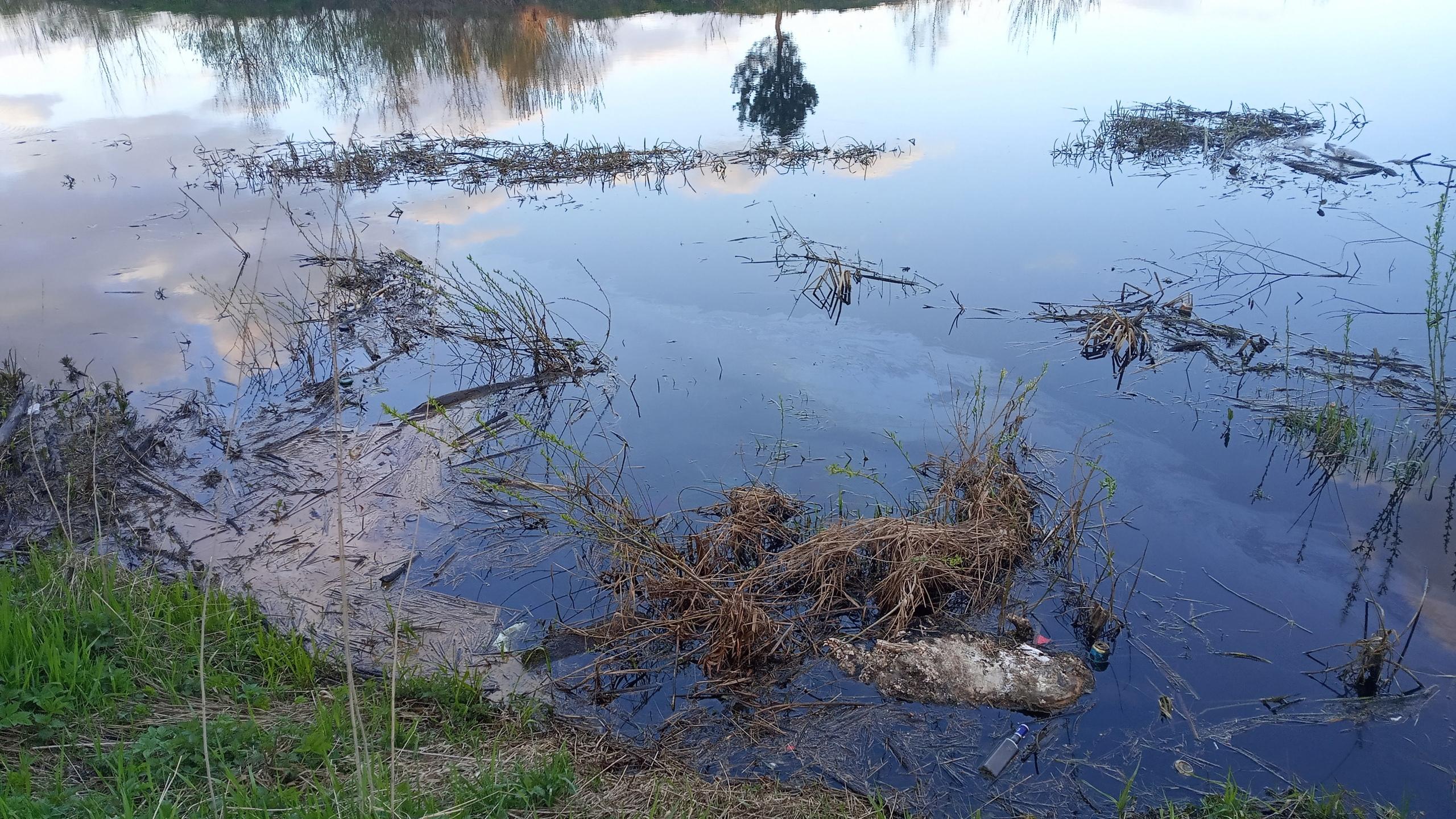 Режим повышенной готовности ввели в Твери из-за масляных пятен на реке