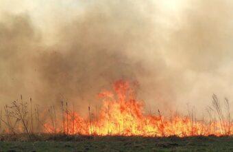 """Жители тверской деревни рассказали об """"огненном вихре"""", уничтожившем жилые дома"""