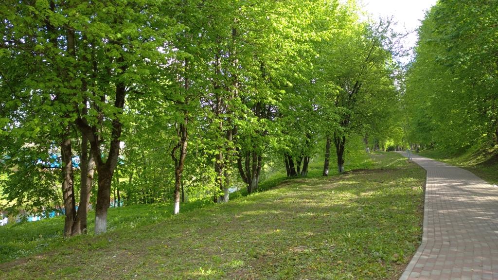 В Тверской области ведётся покос травы