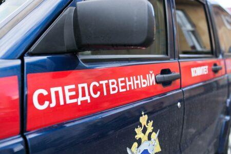 Общими усилиями пропавшую в Тверской области девочку удалось найти