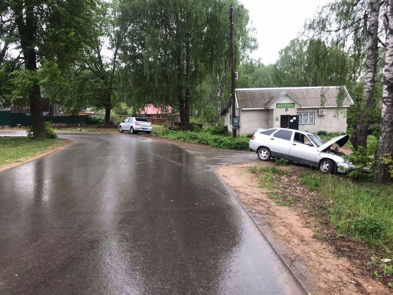 Пьяный водитель протаранил дерево в Тверской области