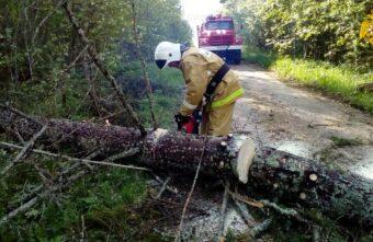 Спасатели разгребают завалы в Тверской области, а синоптики обещают ураган