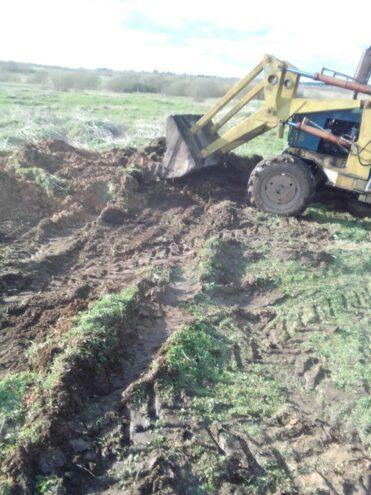 По факту гибели коров в Тверской области следователи начали проверку