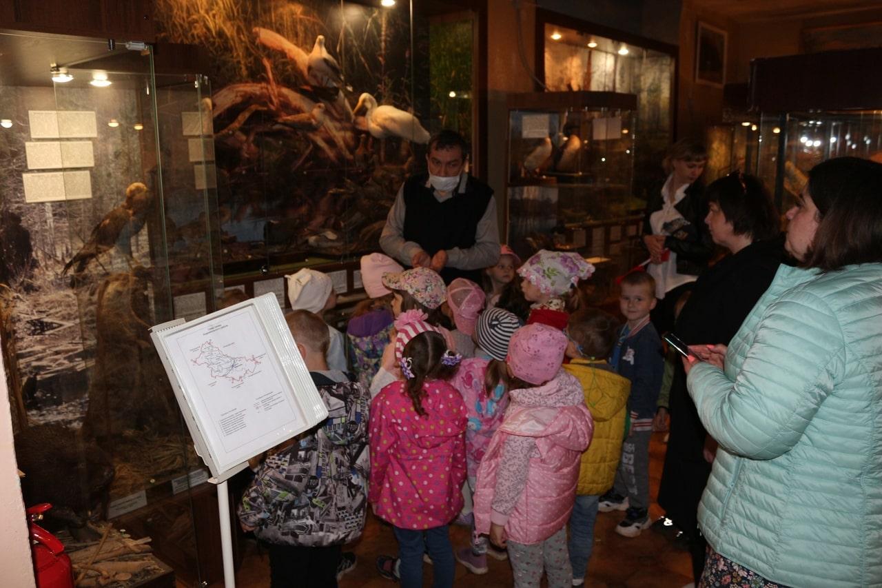В андреапольском музее Тверской области рассказали, почему нельзя бить жаб палкой
