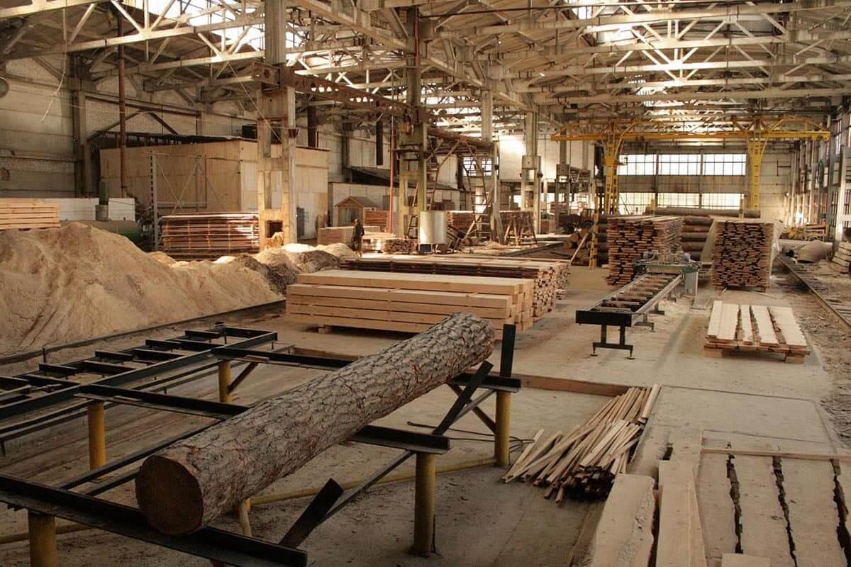 В Андреапольском округе построят деревообрабатывающий завод