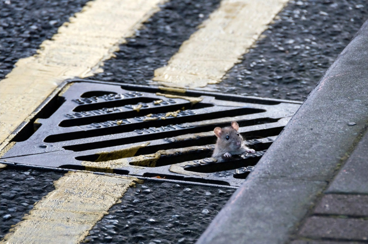 2 года грозит молодому тверитянину за воровство канализационных решёток