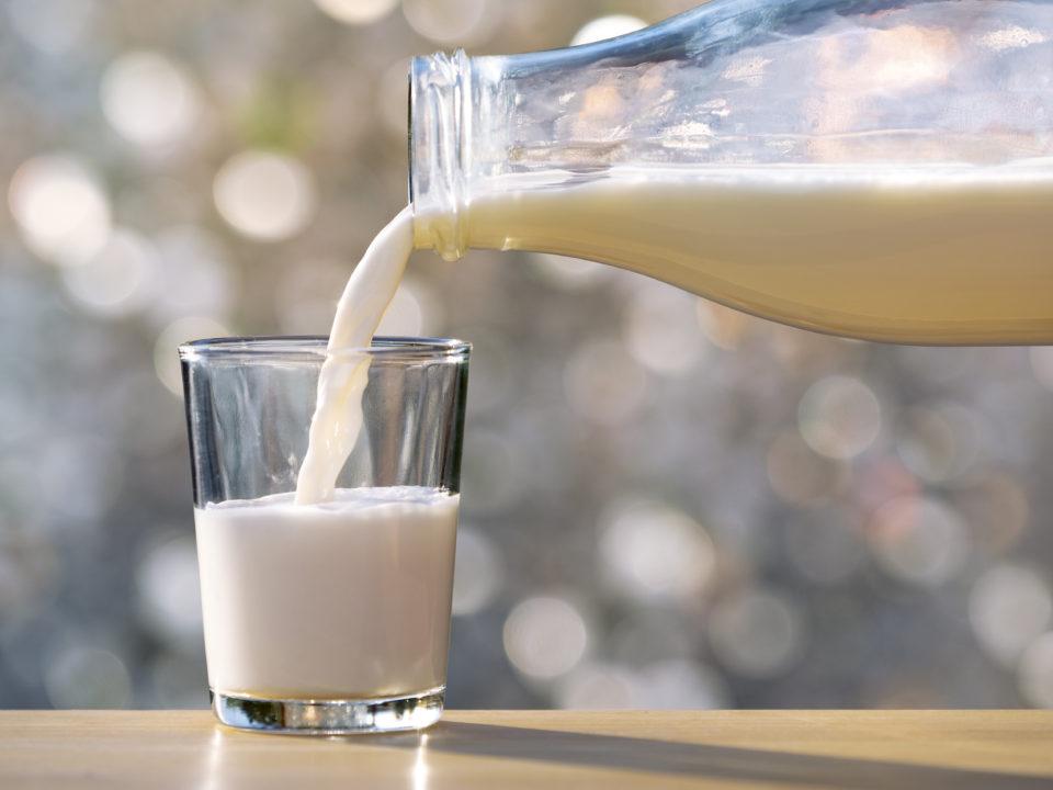В образце молока, взятом в одной из больниц Тверской области, нашли растительные стерины