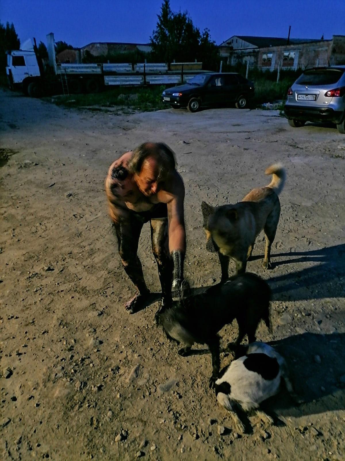В Тверской области собак спасли от смерти в мазуте