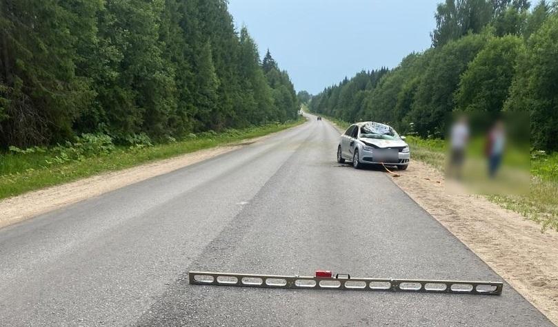 Два человека пострадали в столкновении иномарки с лосём в Тверской области