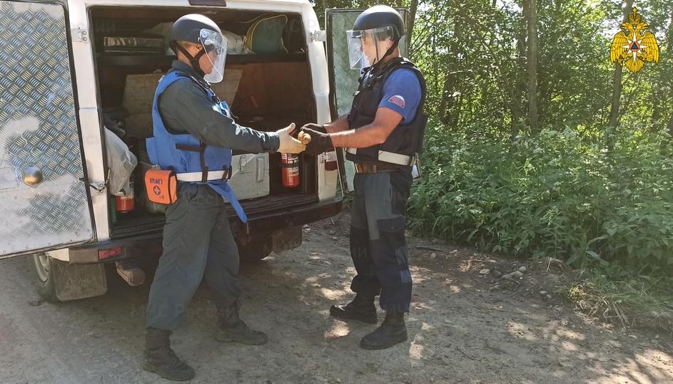 350 мин, снарядов и гранат вытащили из земли в Тверской области