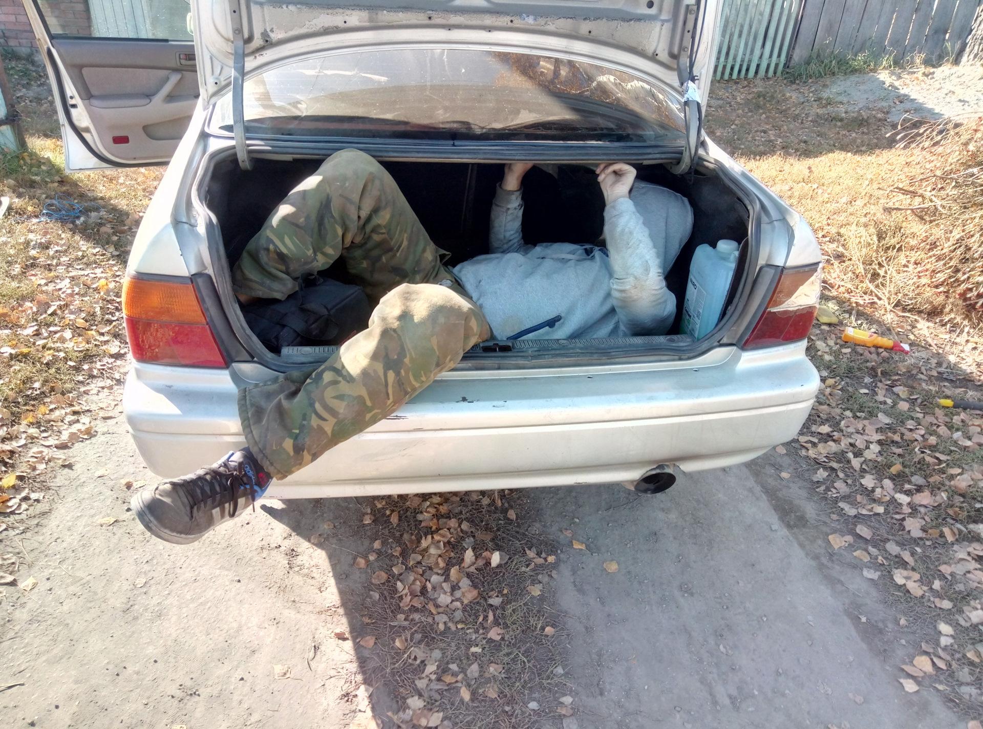 В Тверской области нашли парня, который смог выкрасть магнитолу через багажник