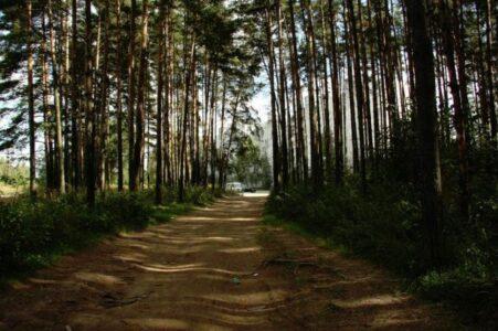"""""""Заповедная Тверь"""" стала охраняемым природным парком"""
