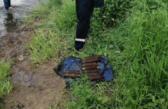 Жители Тверской области во время купания выловили девять боевых снарядов