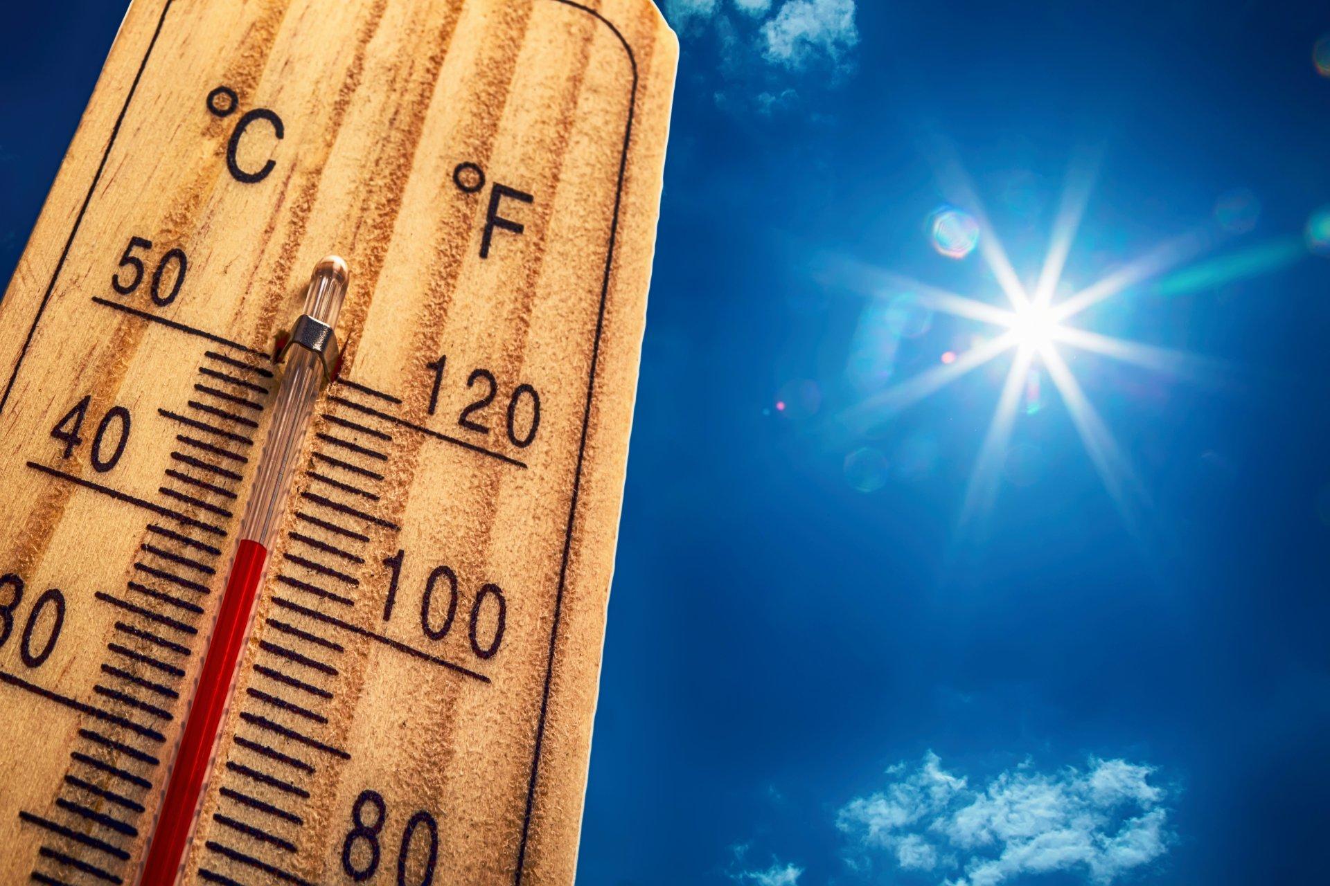В Тверской области погода повысит градус: прогноз на неделю