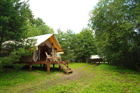 В Тверской области можно отлично отдохнуть на природе в кемпингах и глэмпингах