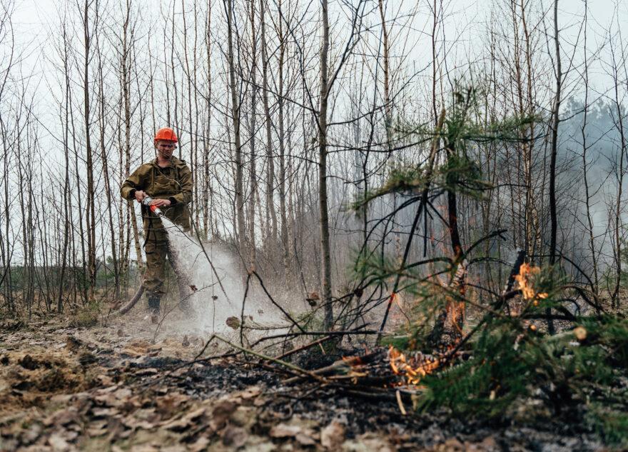 Больше 20 человек тушили лесной пожар в Тверской области