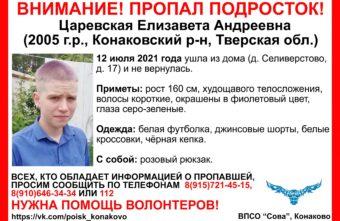 16-летняя жительница Тверской области с фиолетовыми волосами не вернулась домой