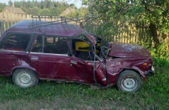 Два человека пострадали в столкновении ВАЗа с деревом в Тверской области