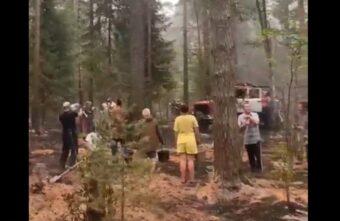 Полсотни жителей Тверской области, бросившихся тушить пожар, попали на видео