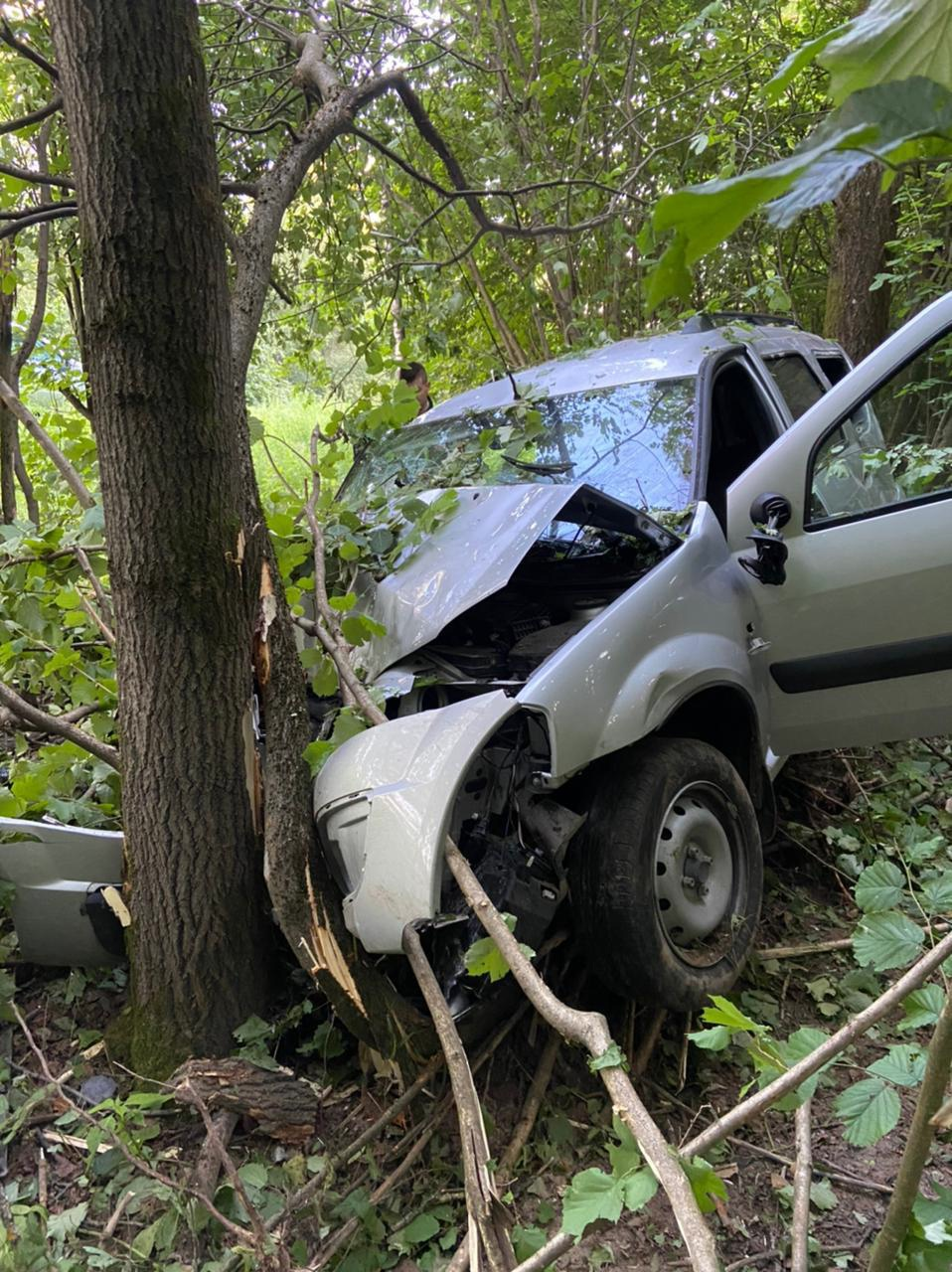 Под Тверью 20-летний водитель вылетел на скорости в кювет