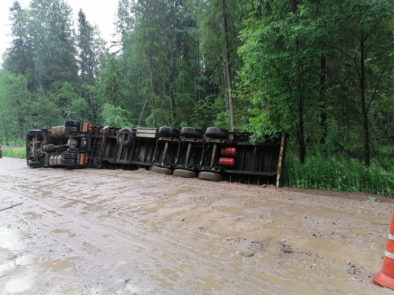 Водитель лесовоза, который опрокинулся в Тверской области, был лишён водительских прав