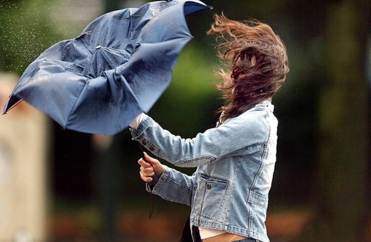В ближайшие часы в Тверской области ожидается ураганный ветер