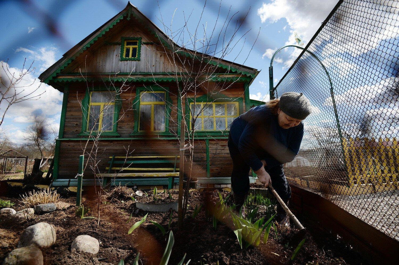 Дачница из Тверской области обеднела на 100 тысяч из-за соседей