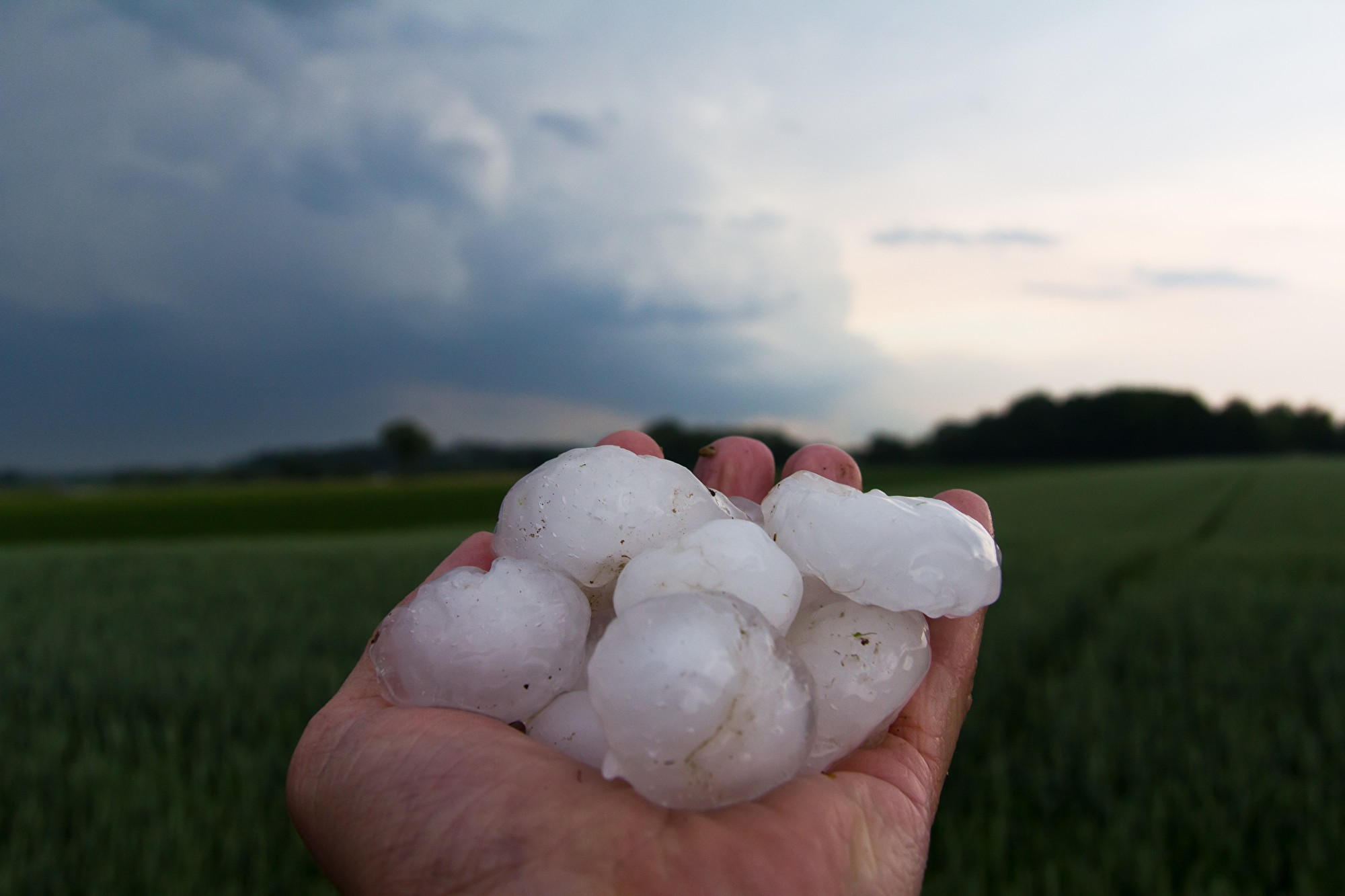 Буря с градом обрушилась на Тверскую область