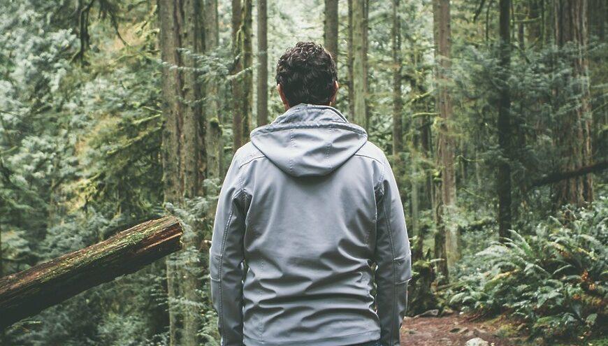 Голос в лесу: как в Тверской области ищут пропавших людей