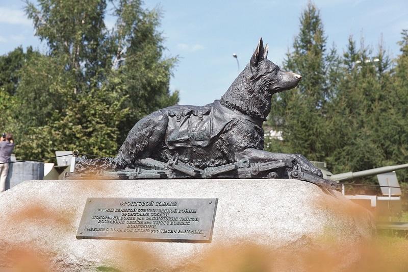 Жителям Тверской области расскажут о подвигах фронтовых собак