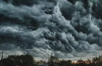 Сильный ветер вернётся в Тверскую область на выходных