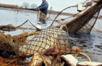Суд оставил приговор браконьеров из Тверской области без изменений