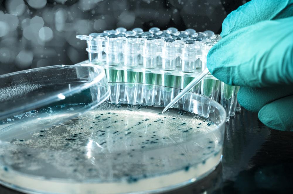 Тверская МВЛ проверяет корма и продукты на наличие опасных бактерий