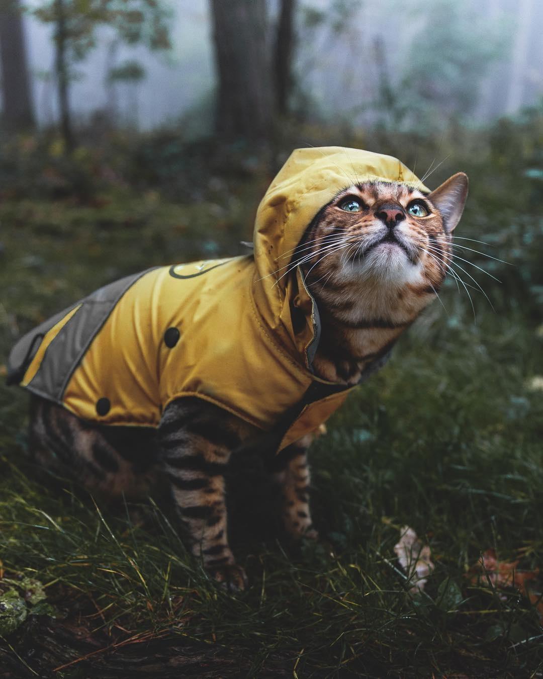 В Тверской области погода в последние выходные лета и огорчит, и порадует