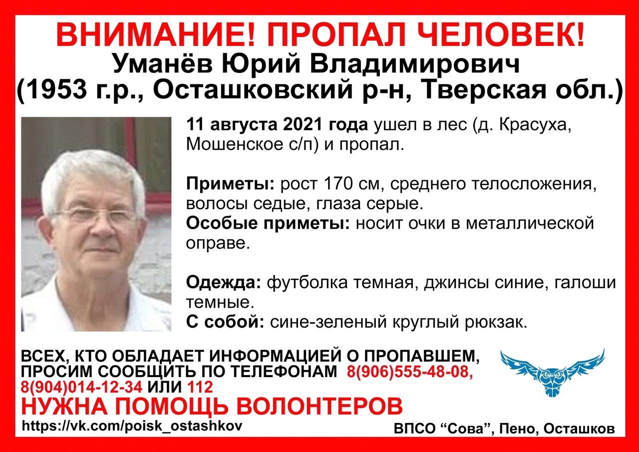 В Тверской области пенсионер ушёл в лес и не вернулся
