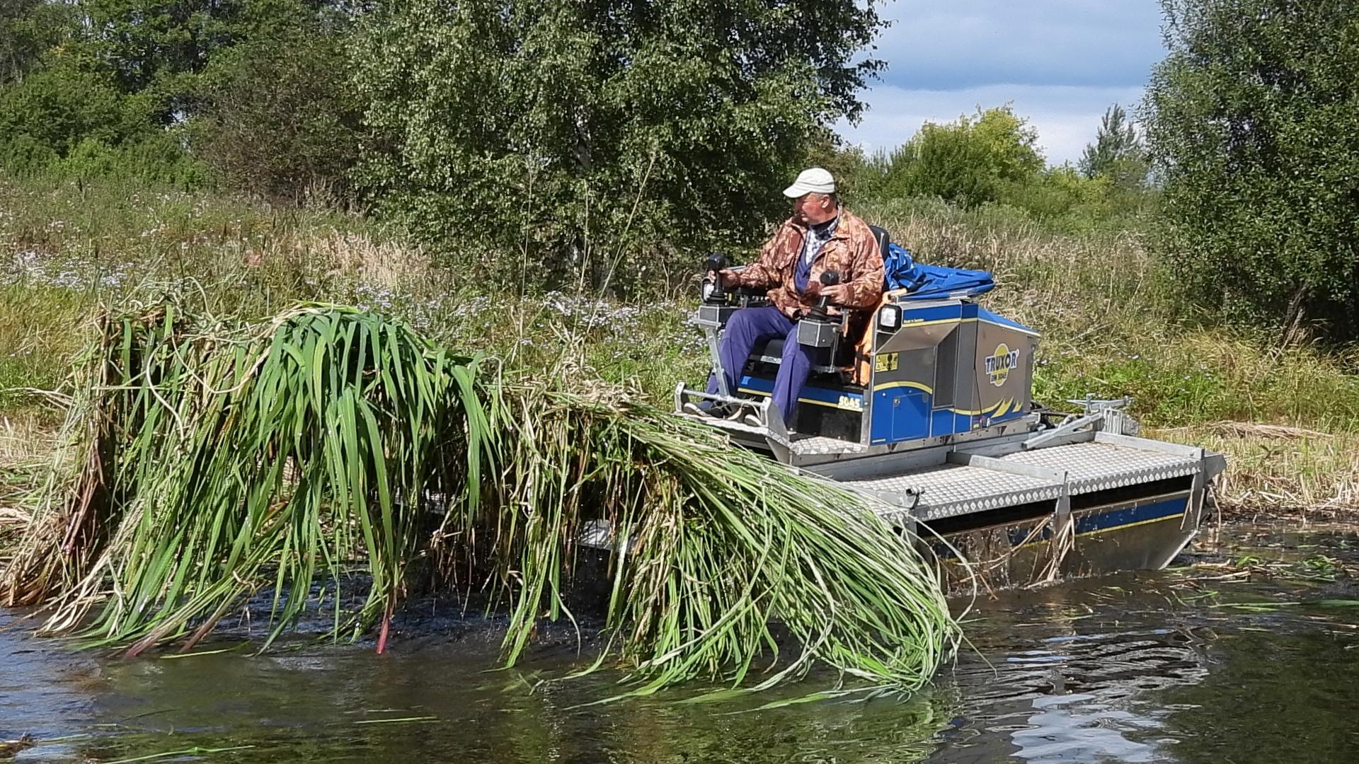 В Калязине чистят реки от сорных растений