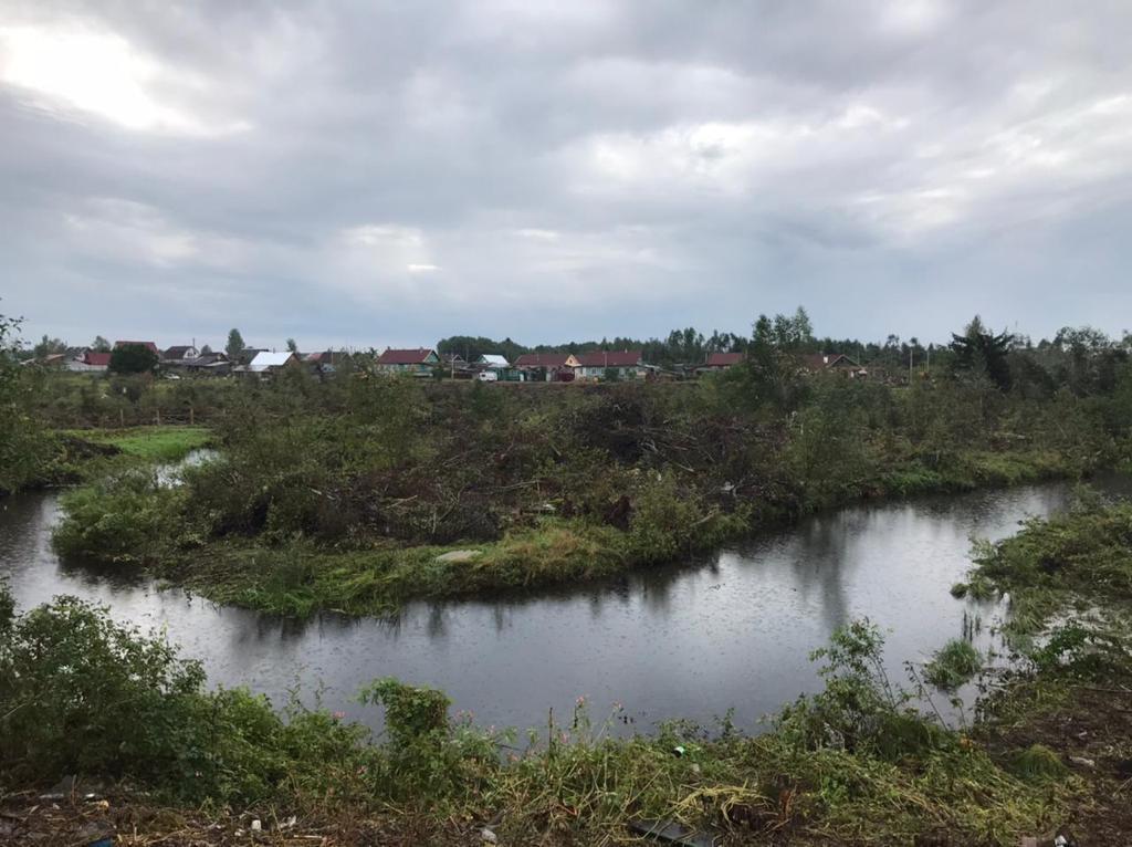 В Андреаполе начали расчищать русло реки Городня