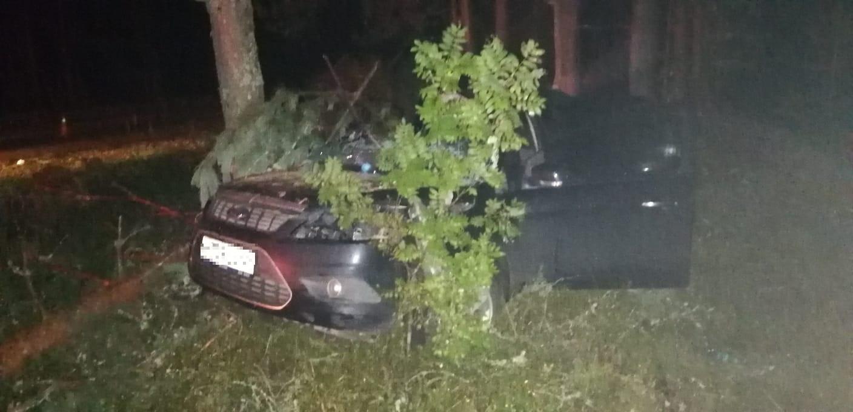 """""""Форд"""" врезался в дерево в Тверской области, есть пострадавшая"""