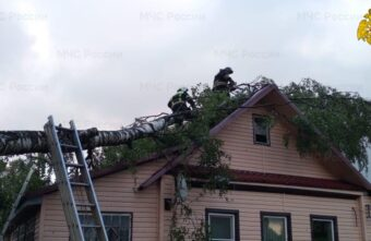 Спасатели помогли жителям Тверской области убрать поваленные ураганом деревья