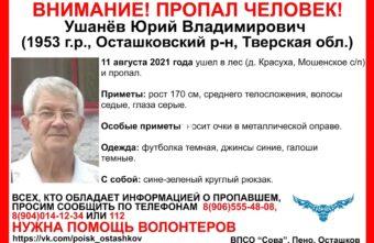 Мужчина из Тверской области ушёл в лес и пропал