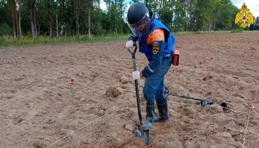 За 2 дня в Тверской области нашли 70 взрывоопасных предметов времён войны