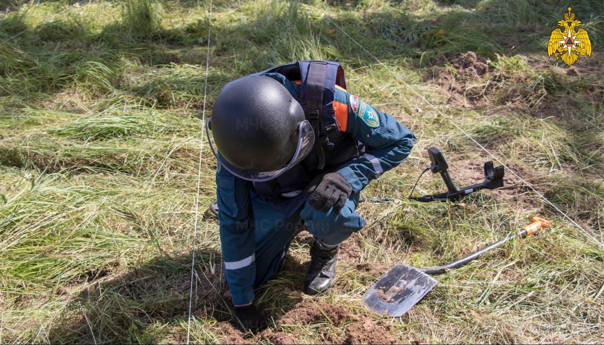 24 миномётные мины и 4 гранаты нашли в Тверской области
