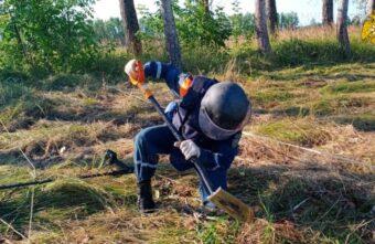 Мины, гранаты и артиллерийский снаряд обезвредили пиротехники в Тверской области