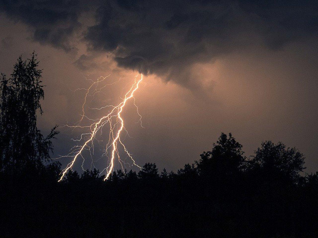Гроза, ливень и сильный ветер надвигаются на Тверскую область