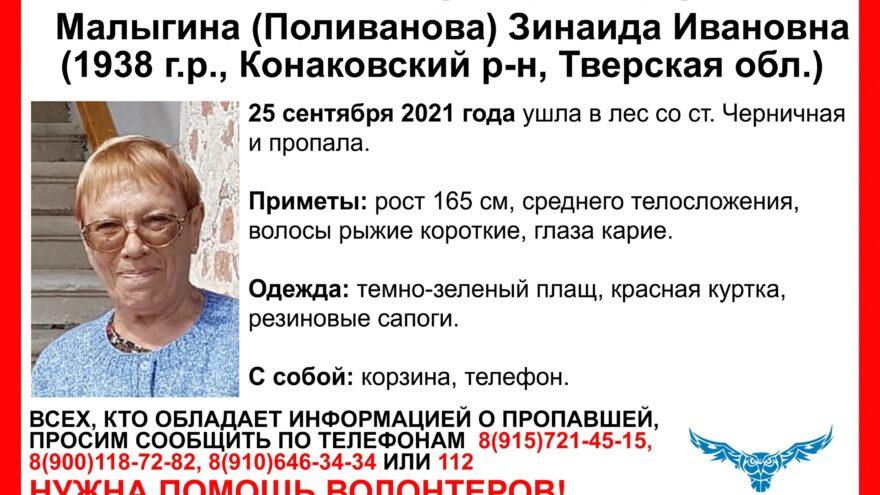 В Тверской области пенсионерка в зелёном плаще ушла в лес и не вернулась