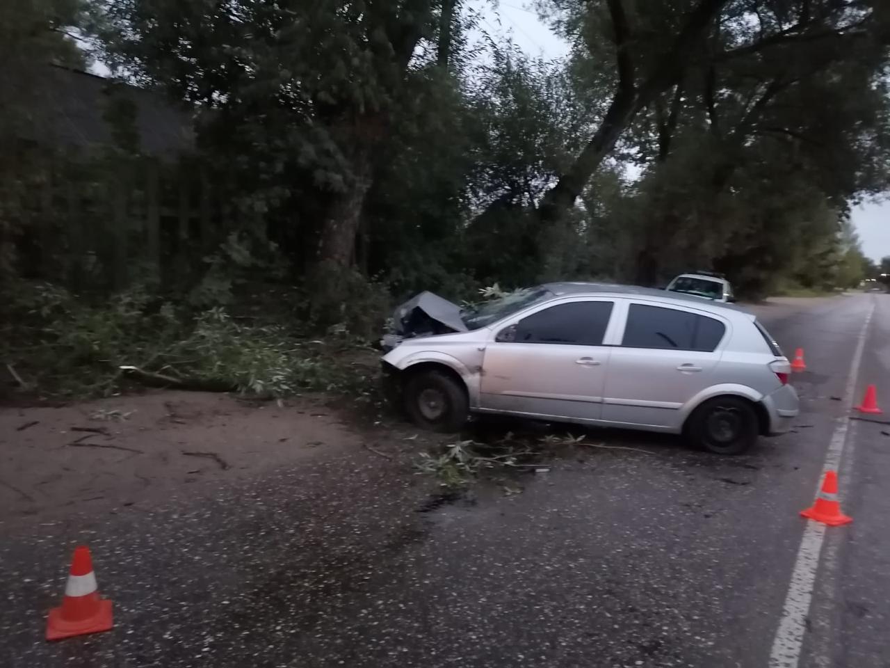 23-летний парень на иномарке влетел в дерево в Тверской области
