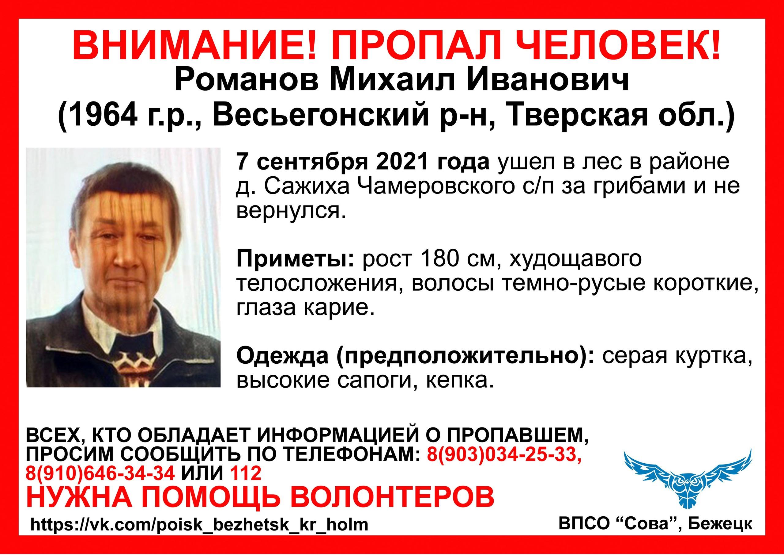 Почти неделю в Тверской области не могут найти грибника